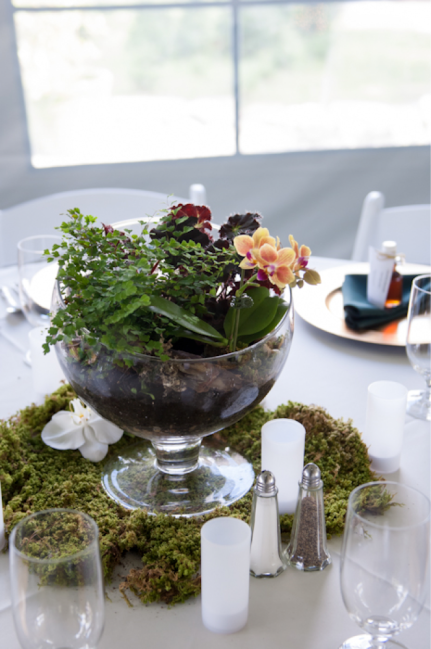 Terrariums: Having a terrarium is a fun alternative for a centerpiece! Using a nice bowl, bell jar or apothecary jar really adds a different touch.