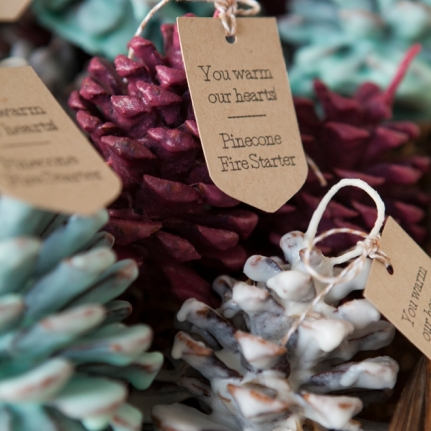 SomethingTurquoise-DIY-Pinecone-Fire-Starter-Favors_0033